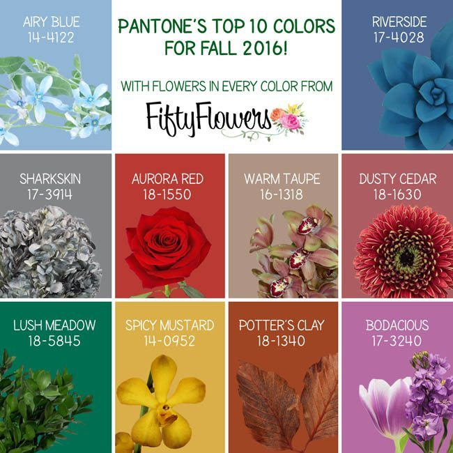 Pantone 2016: Pantone's Color Report For Fall 2016
